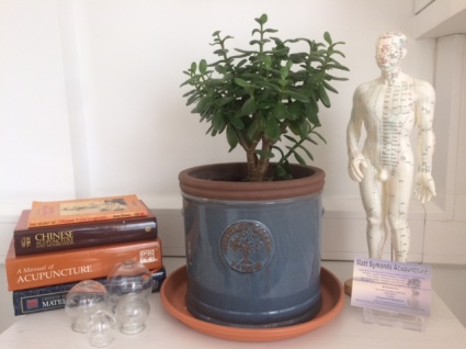 Harrogate Acupuncture