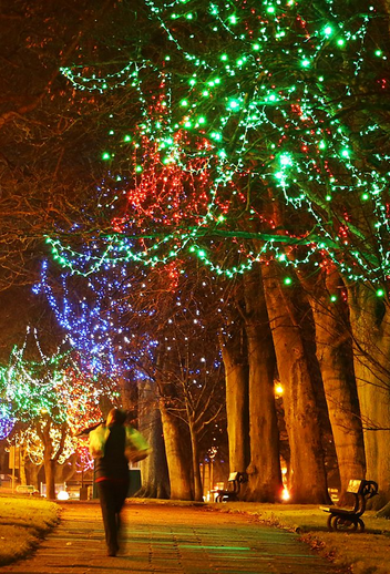 Lights Stray, Harrogate
